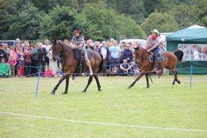 Horsepower2