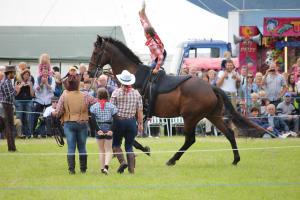 Horsepower3