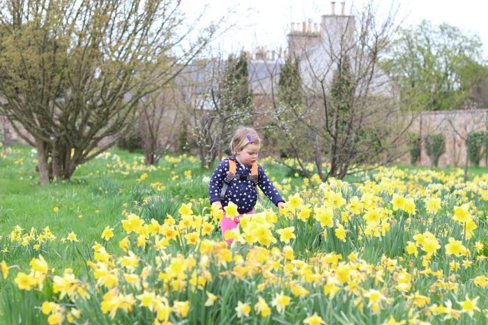 St Mary's Walled Garden, Haddington