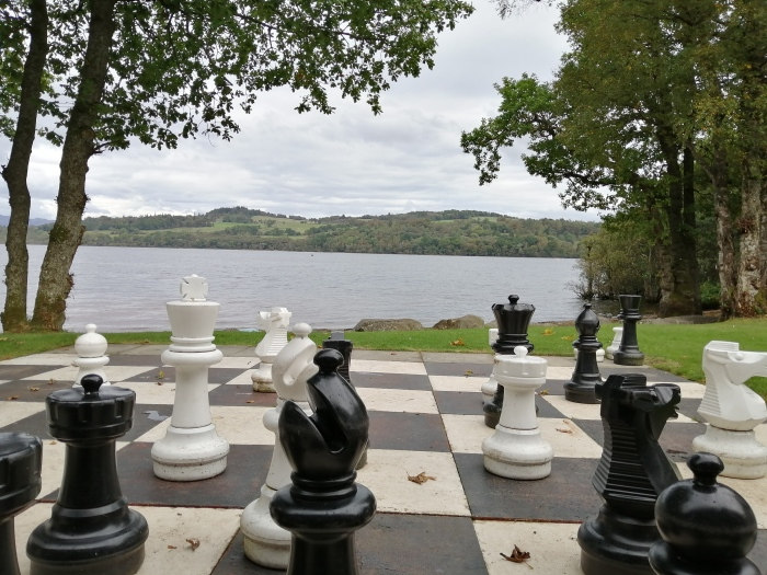 chesse pieces open body of water trees