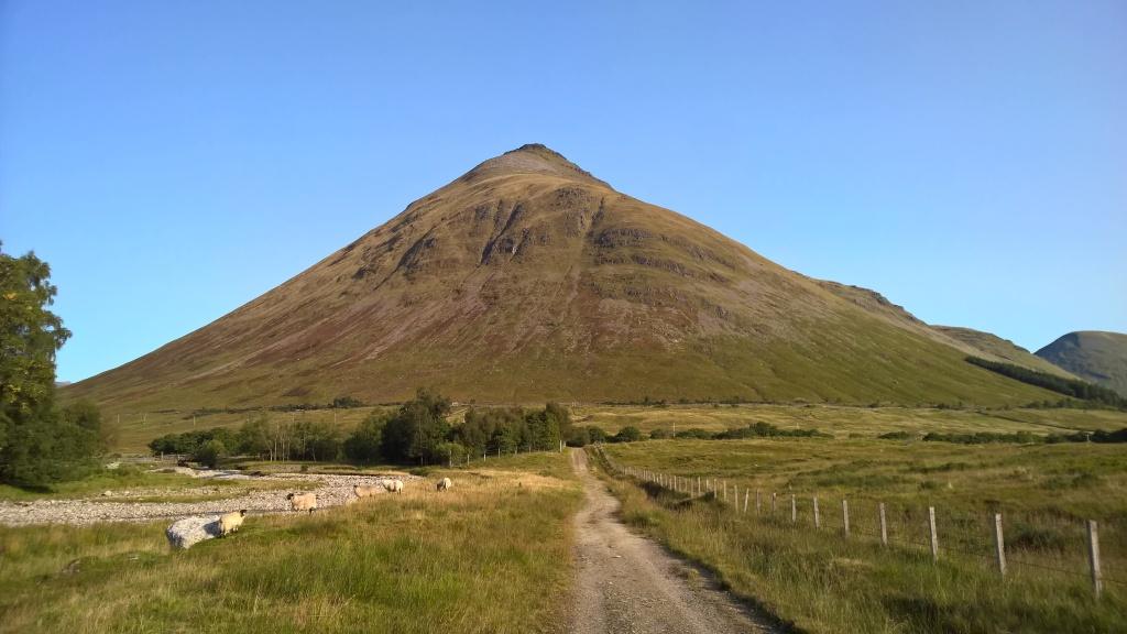 west highland way, scotland, mountain, countryside, pathway, blue skies, sheep