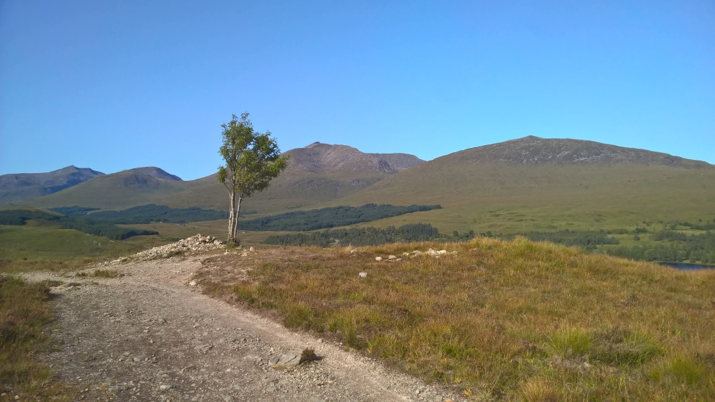 west highland way, scotland, blue skies, hills, mountains, lonely tree, pathway, countryside, loch tulla