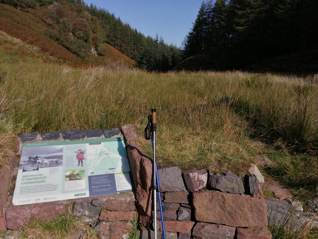 west highland way, scotland, walking stick, trees, forest