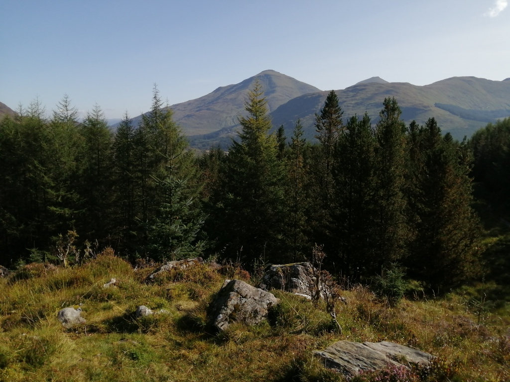 west highland way, scotland, trees, forest, treetops, hills, mountains, blue skies