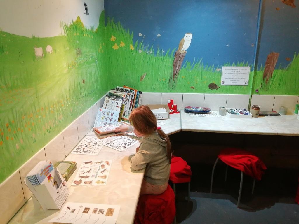 child drawing, books, artwork, wildlife, desk, educational, islay, scotland